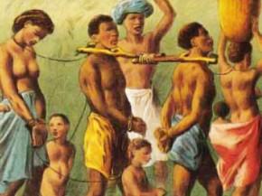 esclaves collaborateurs